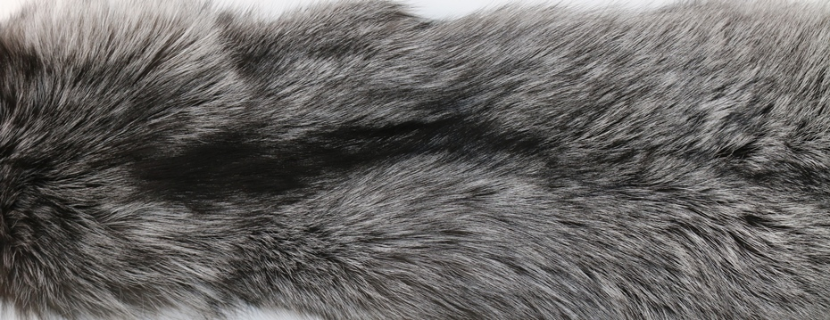 peau de renard argenté silver fox saga furs fur confection grossiste peaux fourrure grande taille 00 stock couleur naturelle sarrians négociant